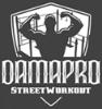 DAMA Pro